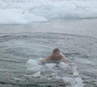 antarctica_swim